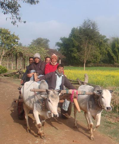 Traditional transportation for visitors