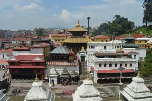 Pashupatinath: Lord of all Animals and Humans