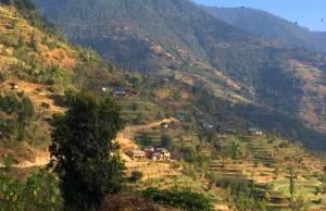 Bareng rural municipality