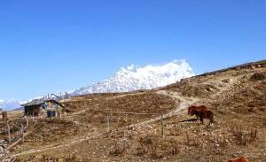 Helambu-Photo-Samdee Sherpa