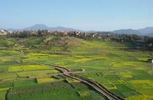 fields of khokana
